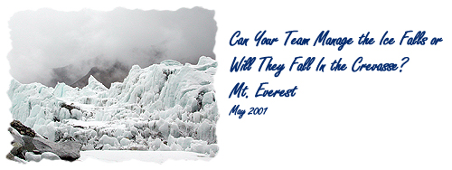 Can Your Team Manage the Ice Falls or Will They Fall In the         Crevasse? Mt. Everest